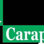 Jornal Guia Carapicuíba